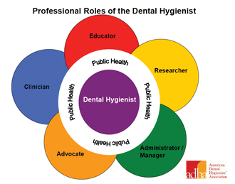 Graph of Prefessional Roles of the Dental Hygienist